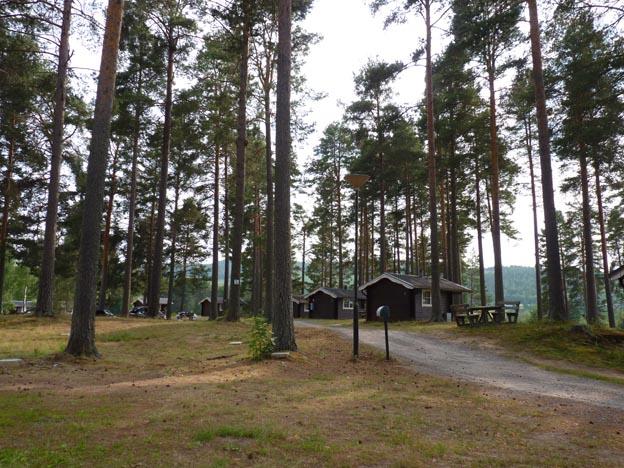008 2013-07-13 022 Camp Mid Adventure