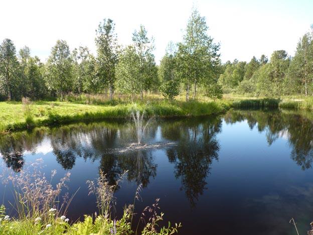 019 2013-07-17 020 Hetan Lomakylä