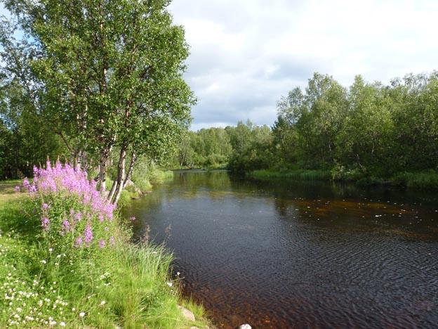 021 2013-07-17 027 Hetan Lomakylä
