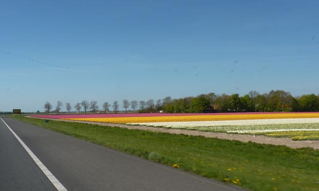 004 2014-04-16 010 Holland A6 Lemmer Emmeloord