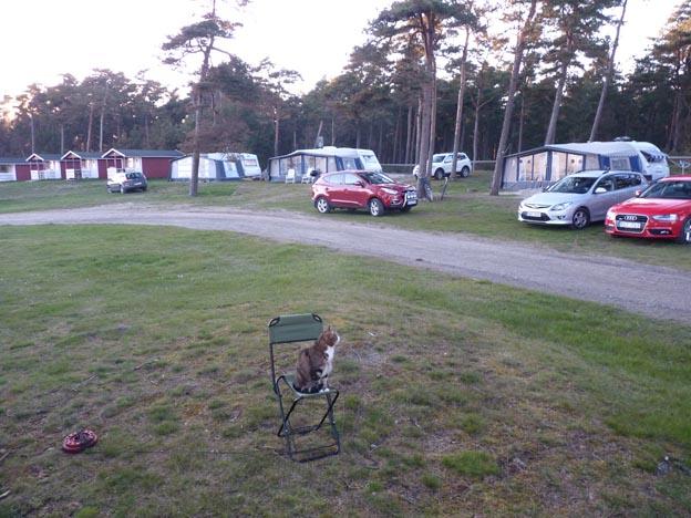 009 2014-04-18 024 Löderups Strandbad Camping