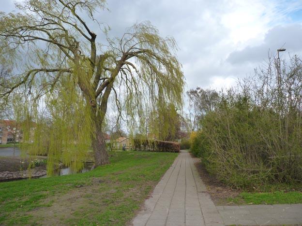 016 2014-04-13 026 Haderslev
