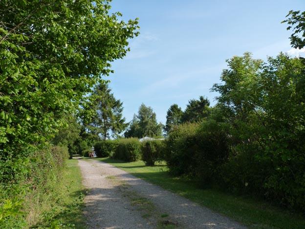 008 2014-06-27 013 Grönnegårde Camping