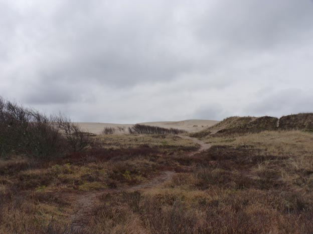 004 2015-03-31 007 Råbjerg Mile