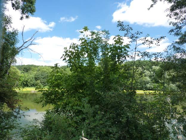 026 2015-07-21 009 Camping I'le de Offard Saumur Loire
