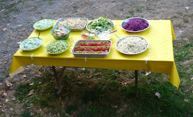 019 2015-07-23 031 Camping i Etang-sur-Arroux