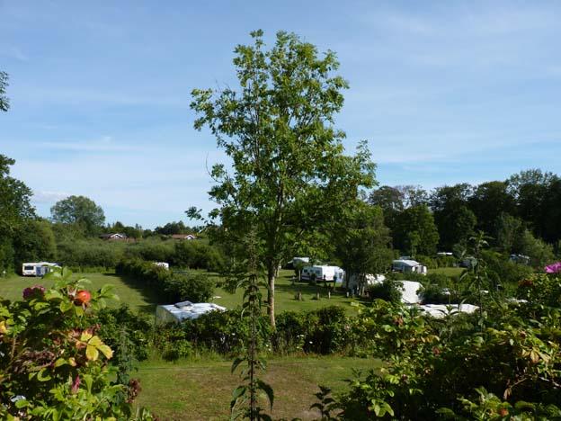 007 2015-08-01 010 Billevänge Camping