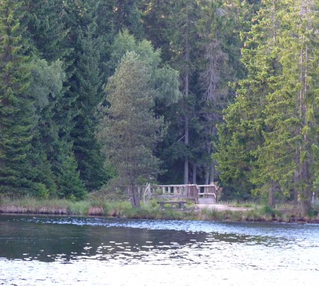 011 2015-07-29 023 Camping Fichlelsee