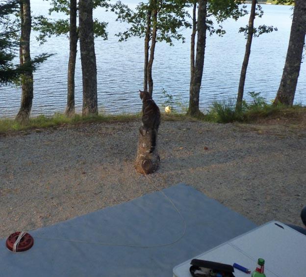 008-2016-08-05-014-camping-municipal-du-lac