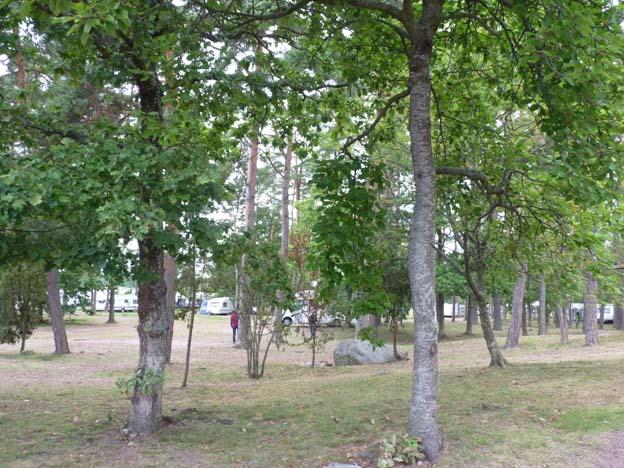 009-2016-08-17-011-kalmar-camping-rafshagsudden
