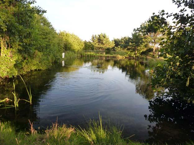 029-2016-08-14-036-uge-lystfiskeri-og-camping