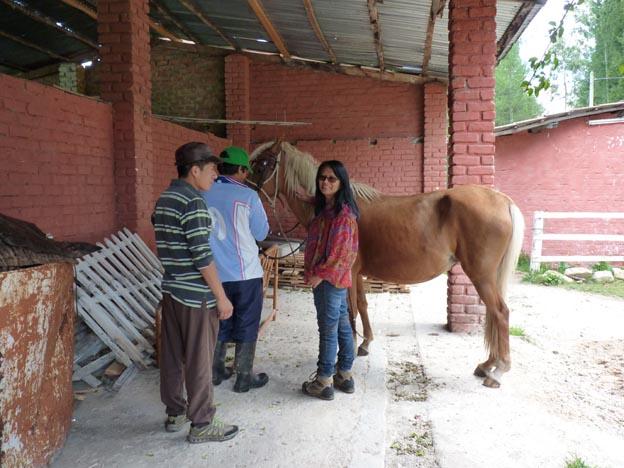Hästen, Nidia, Alejandro och hästskötaren.