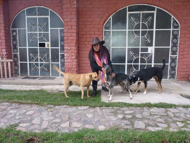 Patricia och några av hundarna.