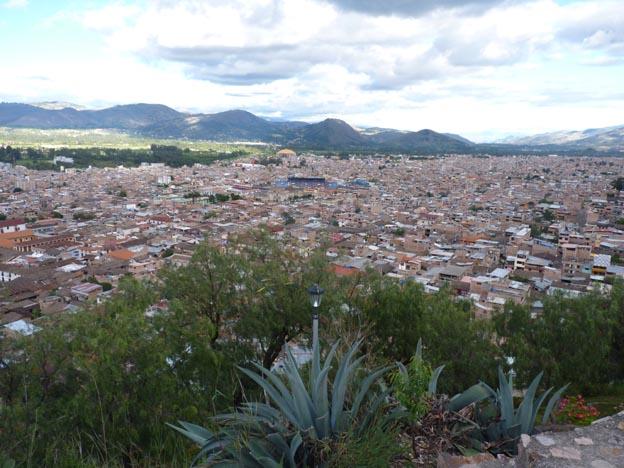 Cajamarca och aloe vera.