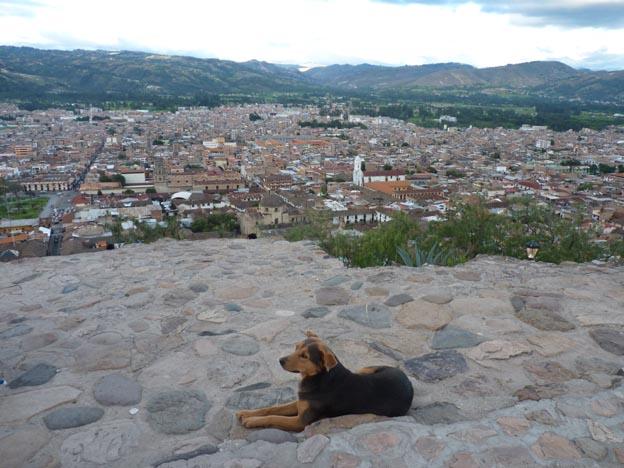 Hunden och Cajamarca.